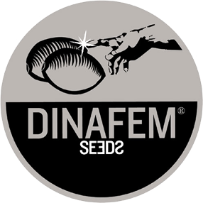 Dinafem coupons